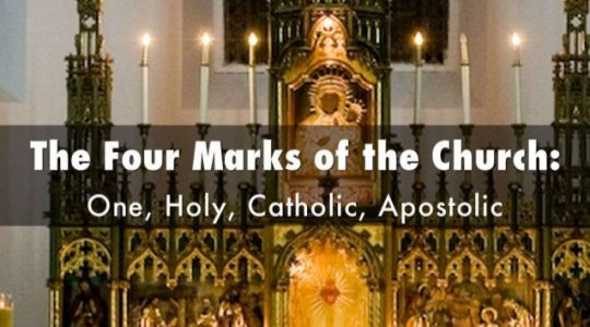 The Four Marks of the Church (CCC 811-962)