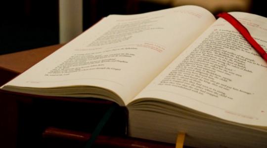 Sunday Scripture Commentaries