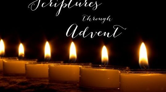 Preparing throughout Advent for Christmas