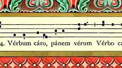 Use of Latin in the Liturgy