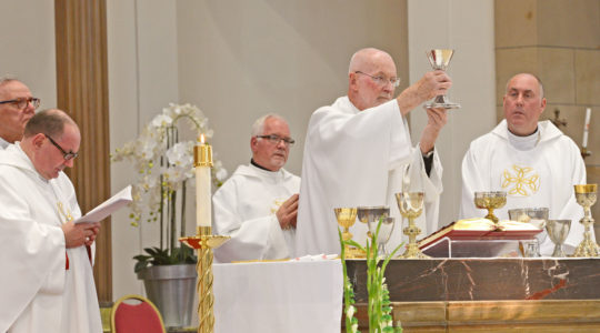 Live Masses in Diocese of Motherwell