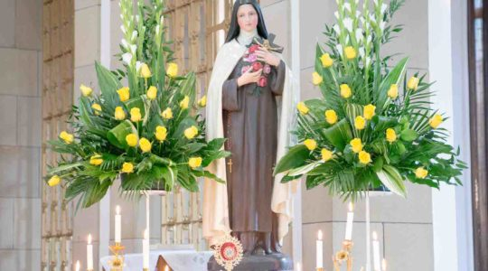 Relics Tour of St Therese of Lisieux Documentary