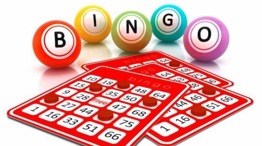 Bingo & Quiz afternoon