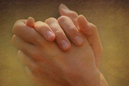 Prayers of the Catholic Faith