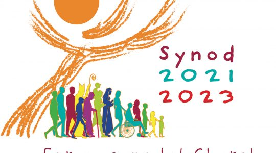 Preparing for the Synod